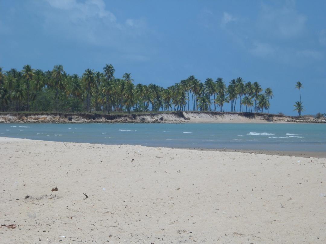 Praia de Paripueira (48).JPG